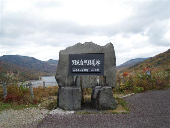 野反湖 シラネアオイ 中之条町 絶景スポット