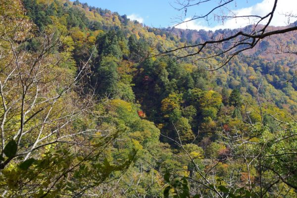 谷川岳一ノ倉沢 岸壁 絶壁 ハイキングコース