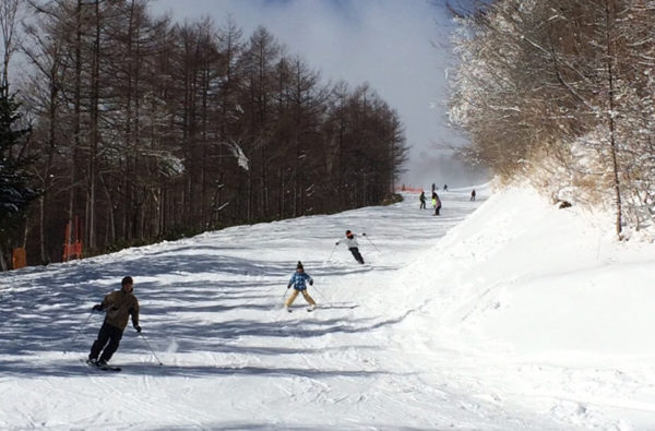 草津温泉スキー場 コース ゲレンデ