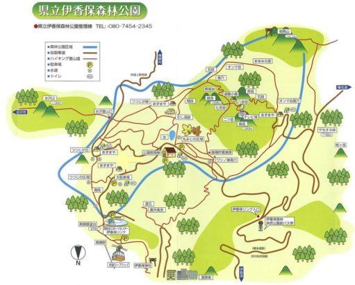 群馬 おすすめ 森林公園 キャンプ