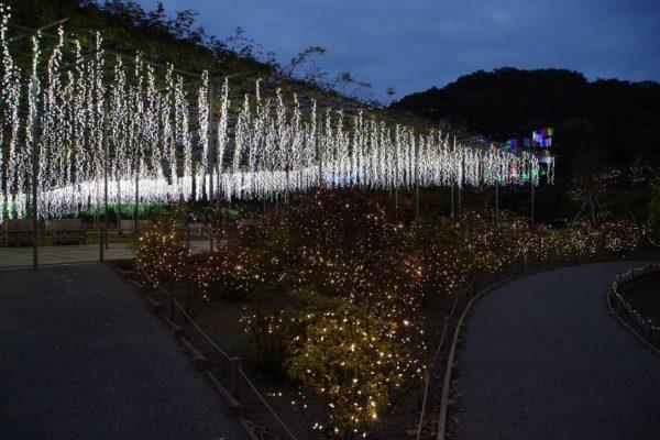 あしかがフラワーパーク 光の花の庭 日本三大イルミネーション 栃木県足利市