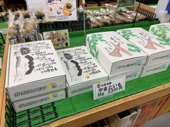ぐんまとろりん 太田市 ヤマトイモ