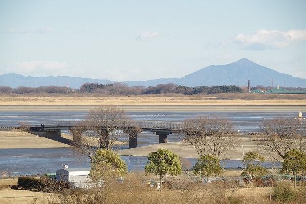 渡良瀬遊水地 ダムカード  道の駅かぞわたらせ