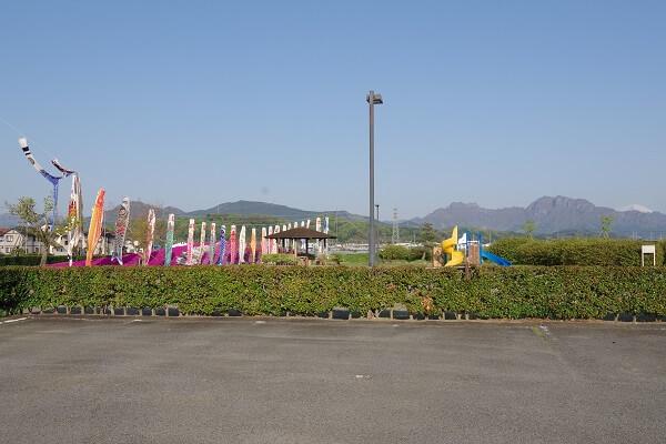 富岡市 黒川ふれあい公園 こいのぼり 芝桜