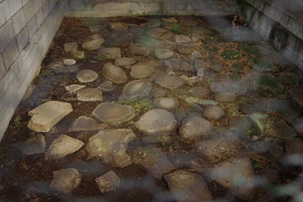 群馬県みなかみ町大穴 水上石器時代住居跡 国指定史跡